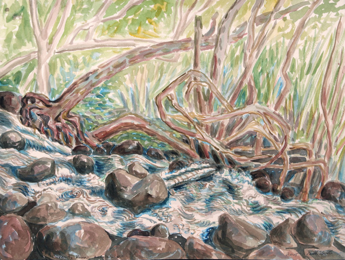 watercolor: Flood, University of Hawaii, Honolulu