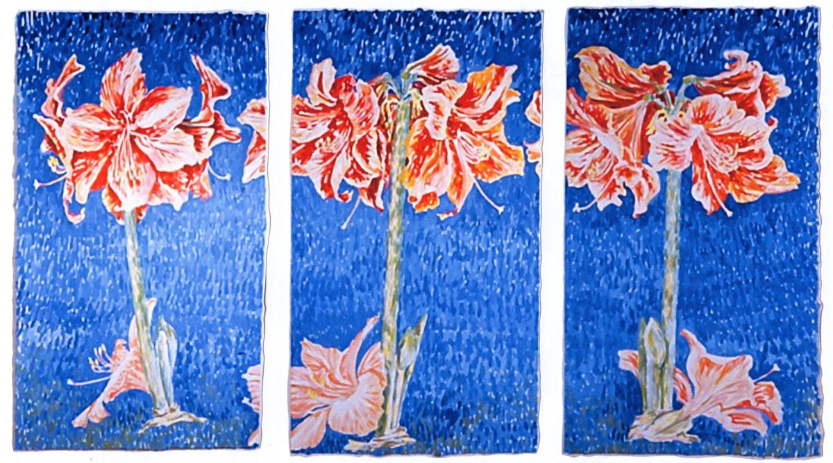 Amaryllis tryptic: acrylic painting