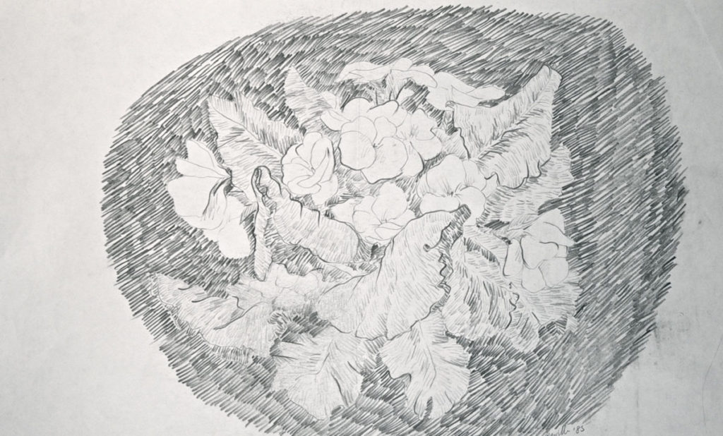 graphite drawing: Wild Violets Roundel