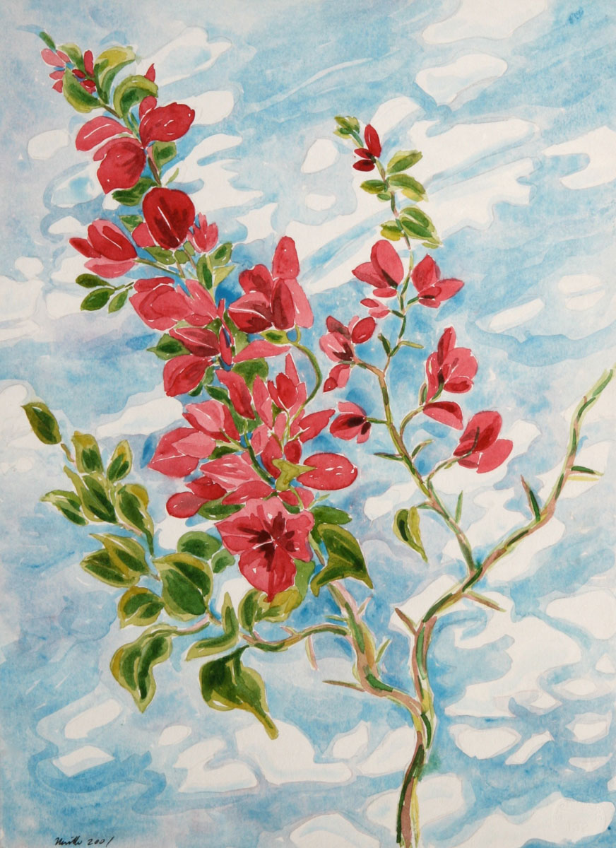 watercolor: Bouganvillea, Venice, CA