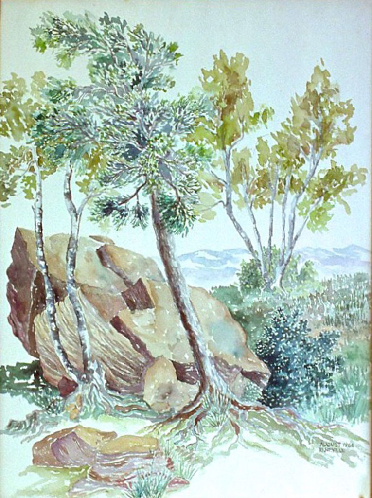 watercolor: Rock Birch Tree, North Lake, Catskill Mountains, NY
