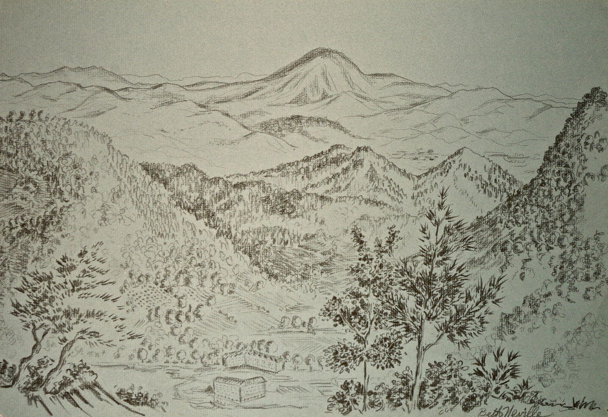charcoal drawing: Danube Valley, Austria